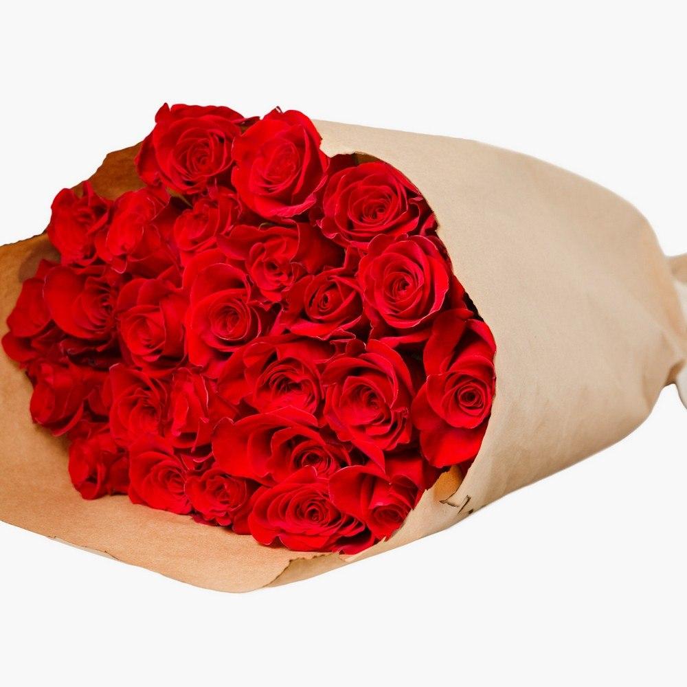Красные розы 1